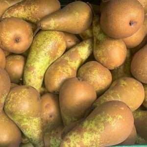 Pears Loose