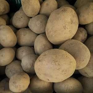 Potatoes Loose